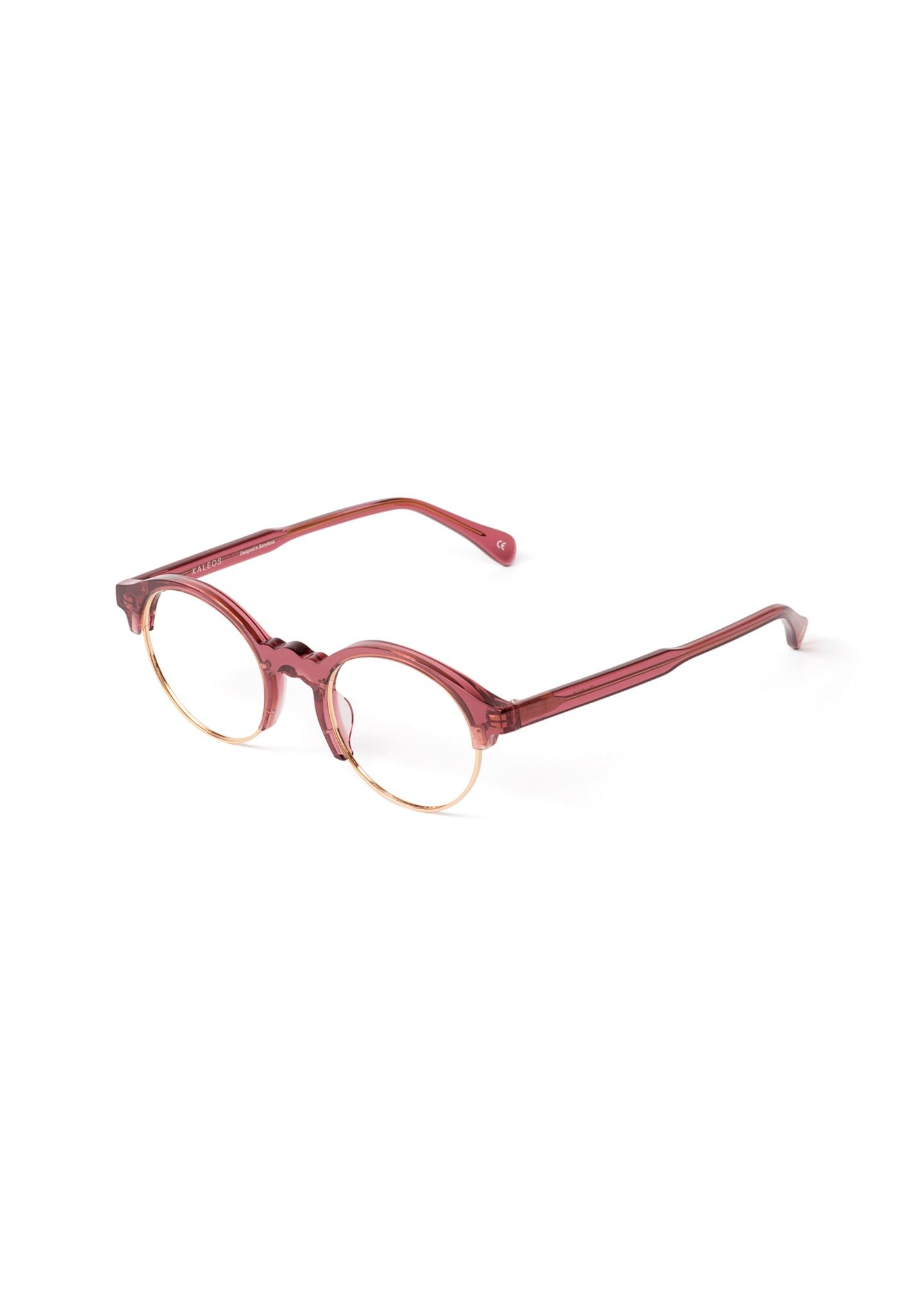 Gafas HOWLAND Color 3