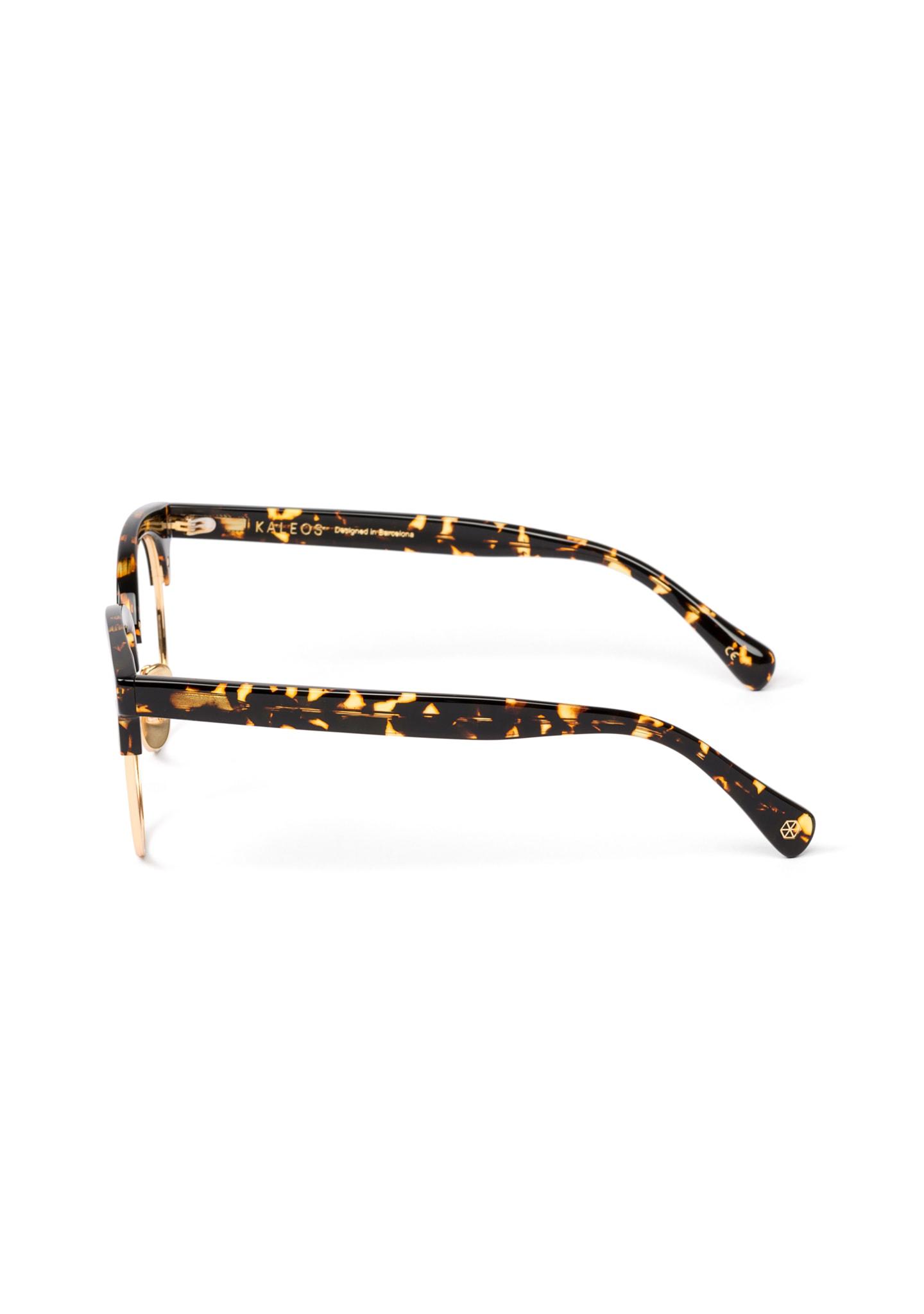 Gafas DORFMAN Color 4