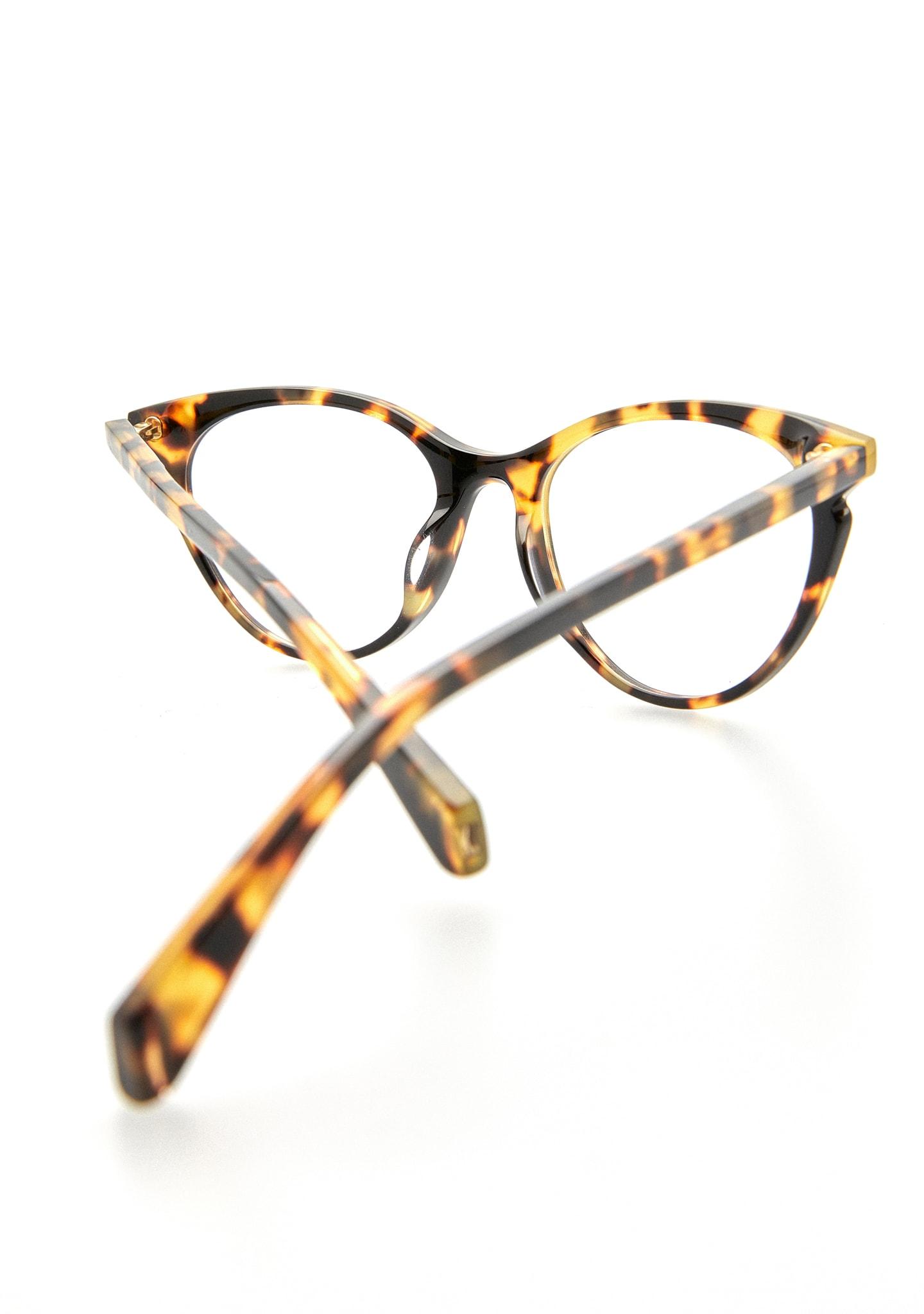 Gafas DARROW Color 2