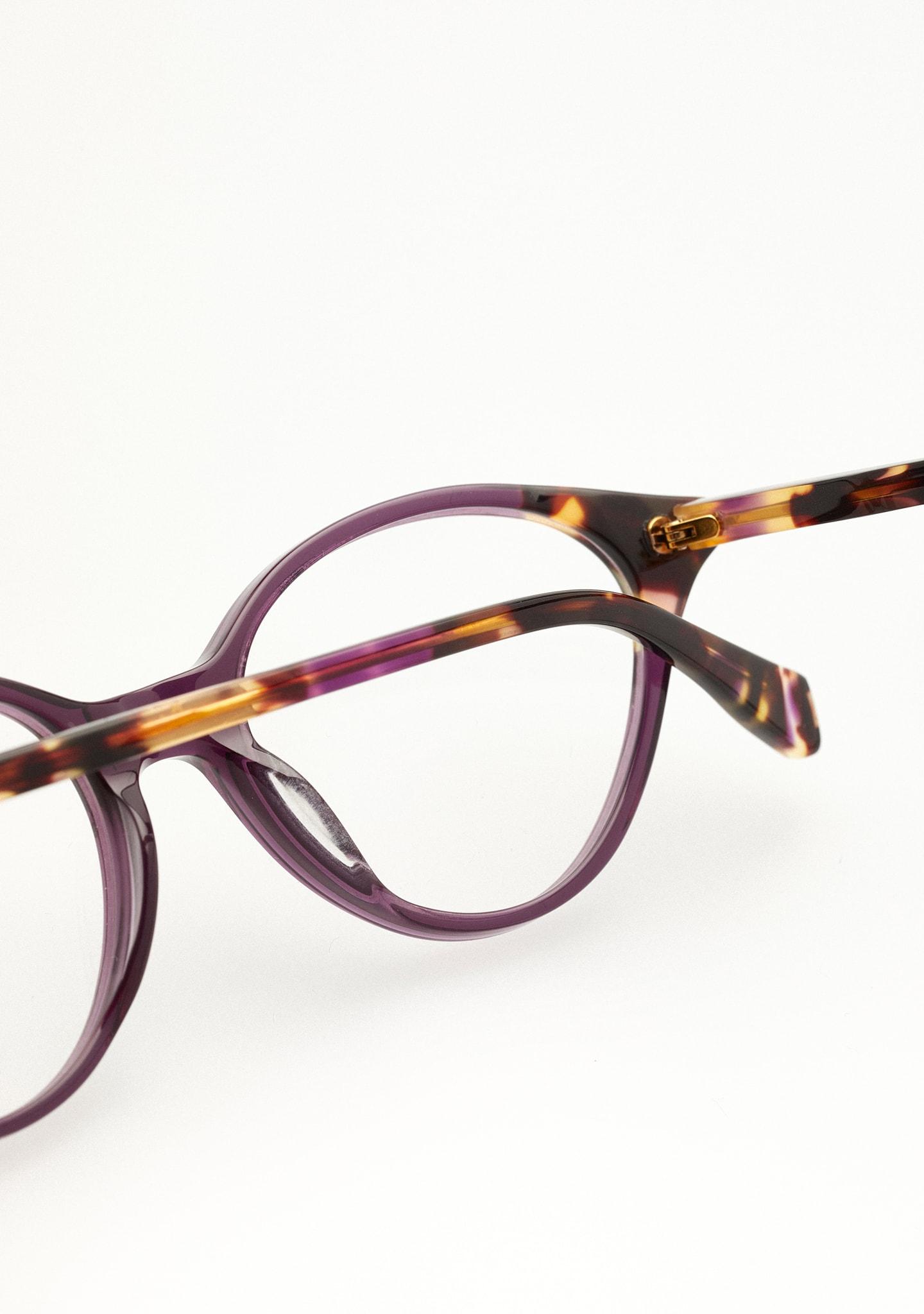 Gafas CASTLEMAN Color 5