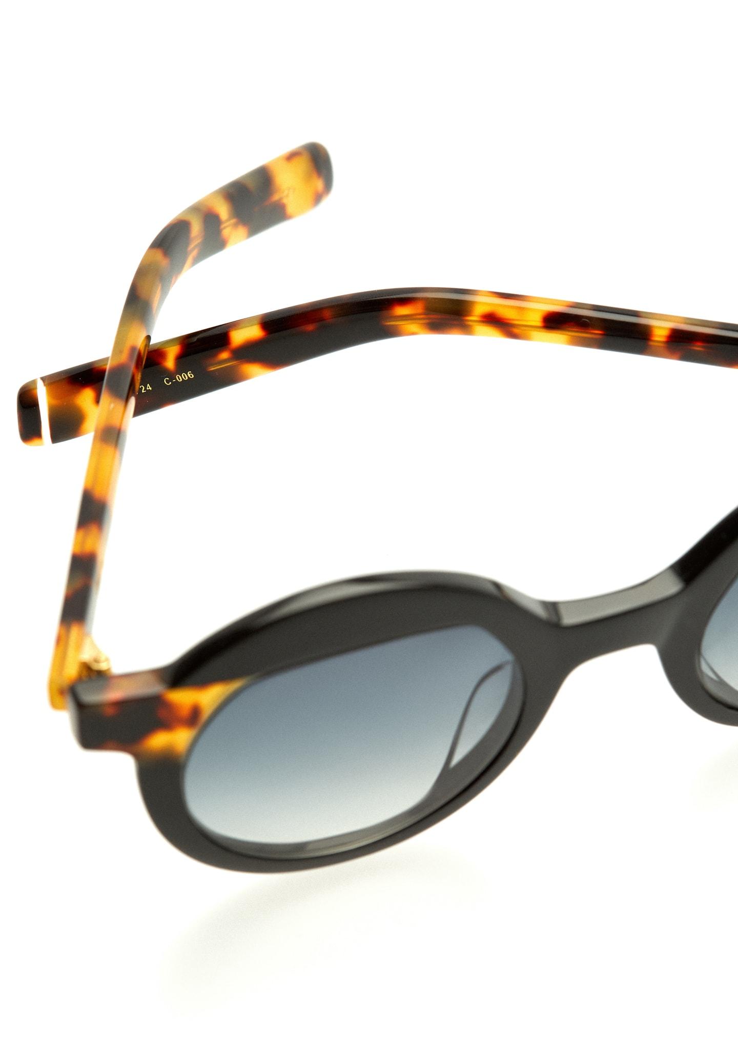 Gafas POLLITT Color 6