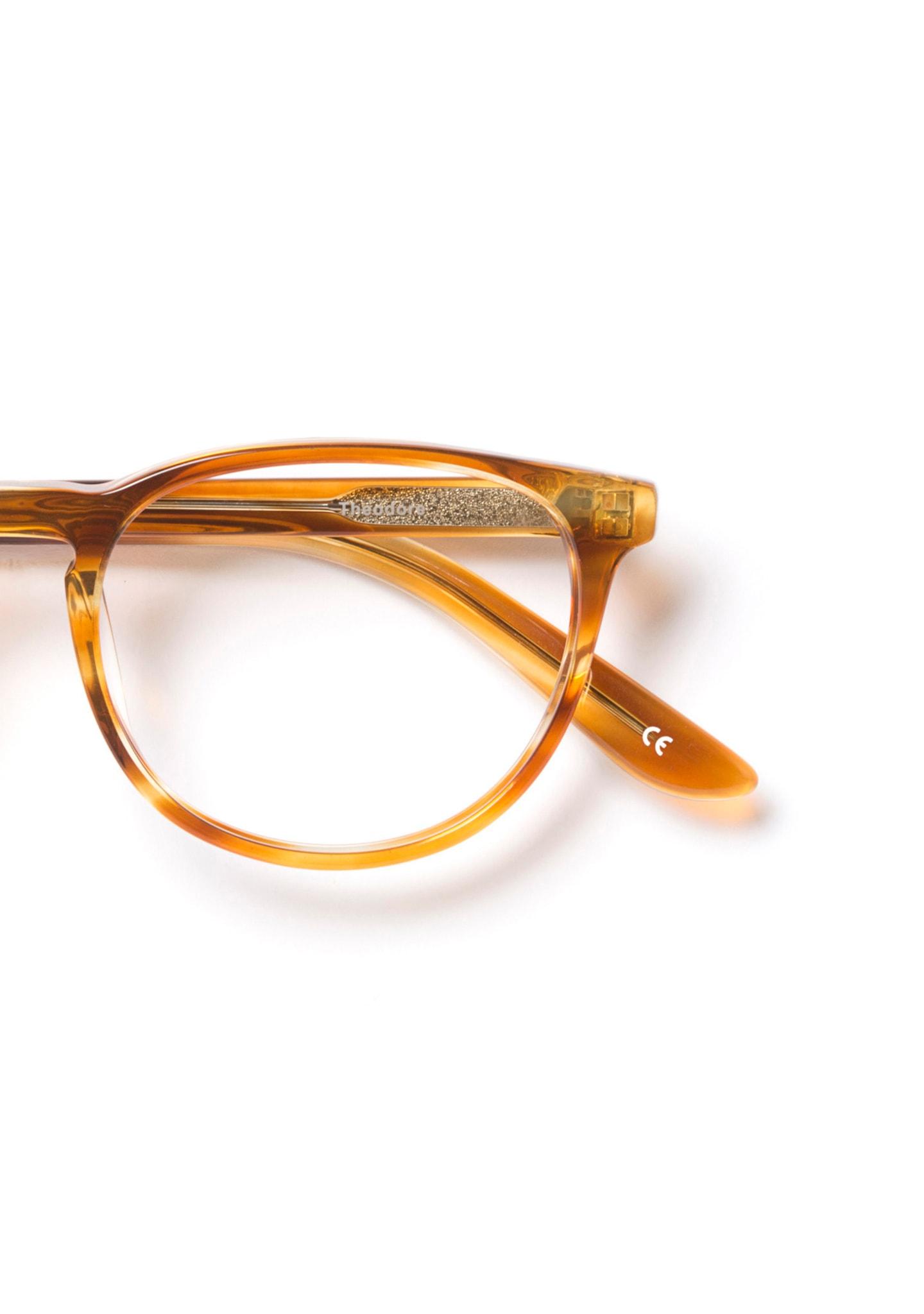 Gafas Theodore Color 5